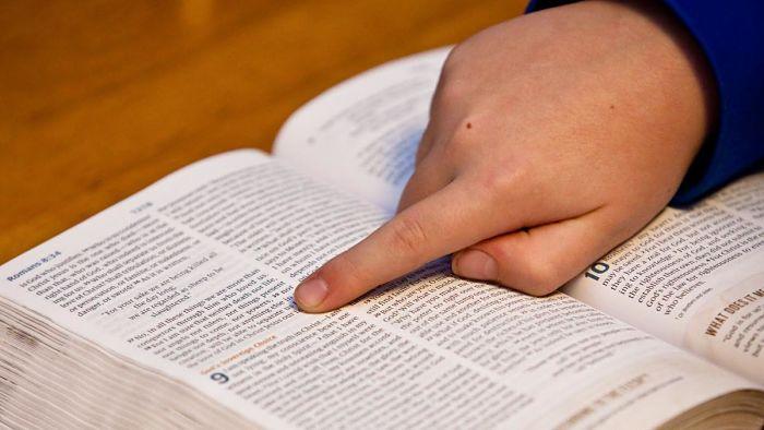 Versículos Bíblicos de Ofrenda por amor